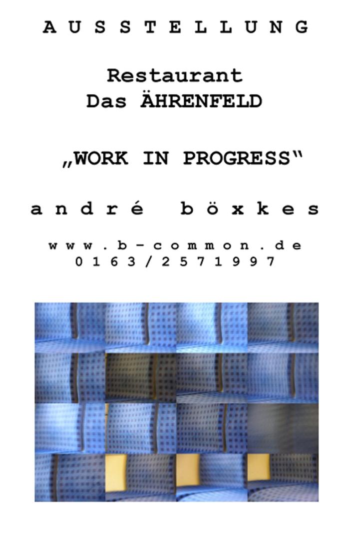 vitae 2013_Aushang +ährenfeld